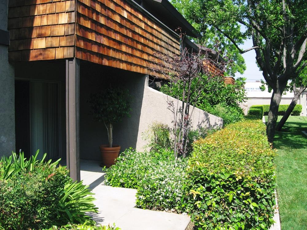 Trellis Garden