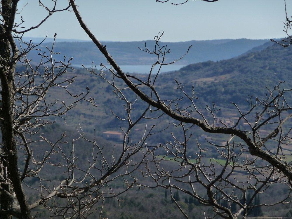 Blick auf den See Salagou