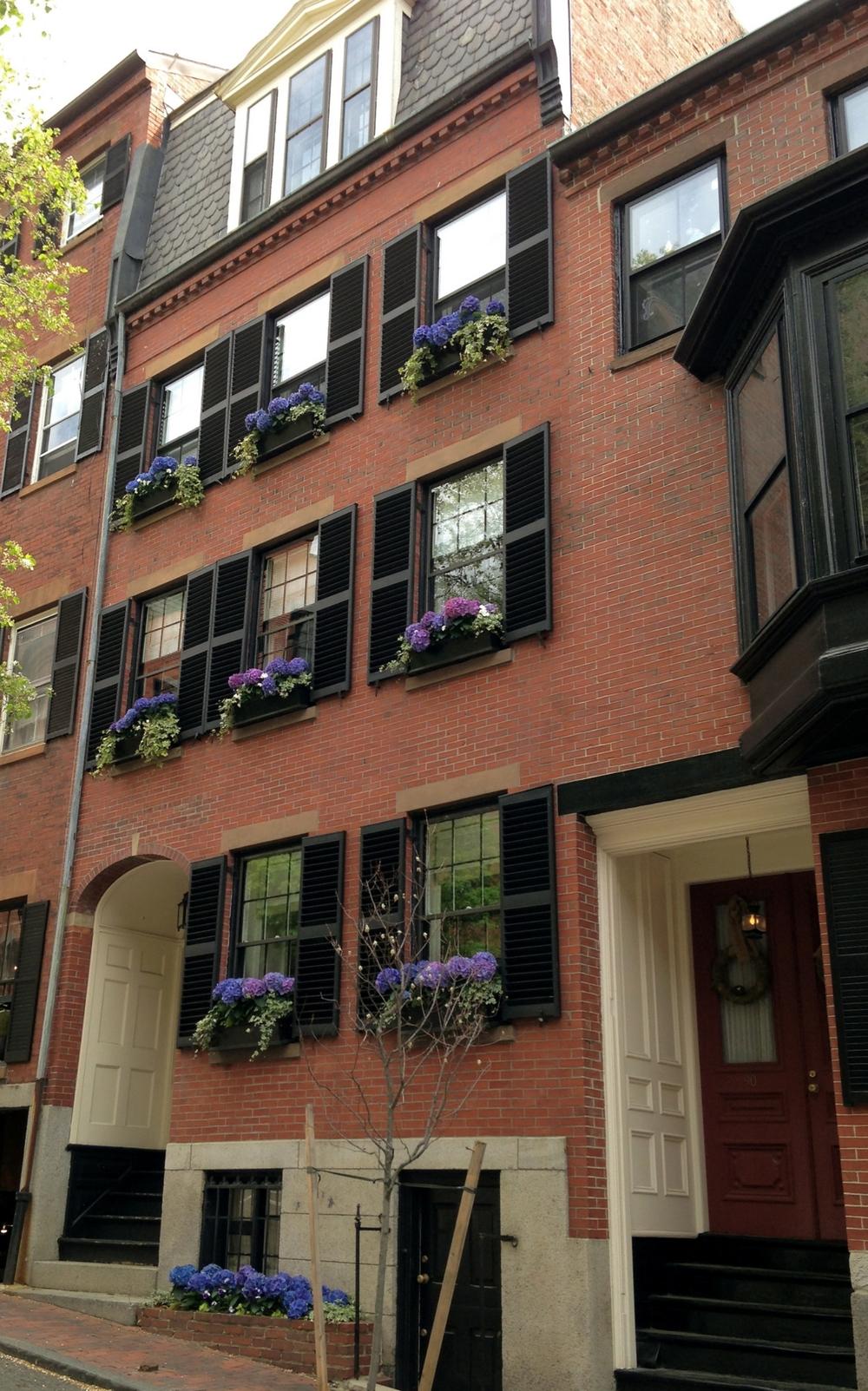 Boston Planting