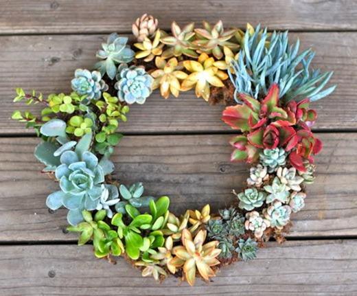 Succulent summer wreath