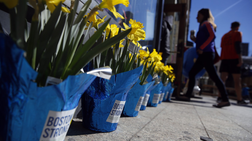 Boston, Massachusetts -- 4/19/2015-- Potted daffodils with Boston Strong stickers on them lined the front of Marathon Sports near the Marathon Finish Line in Boston, Massachusetts April 19, 2015. Jessica Rinaldi/Globe Staff