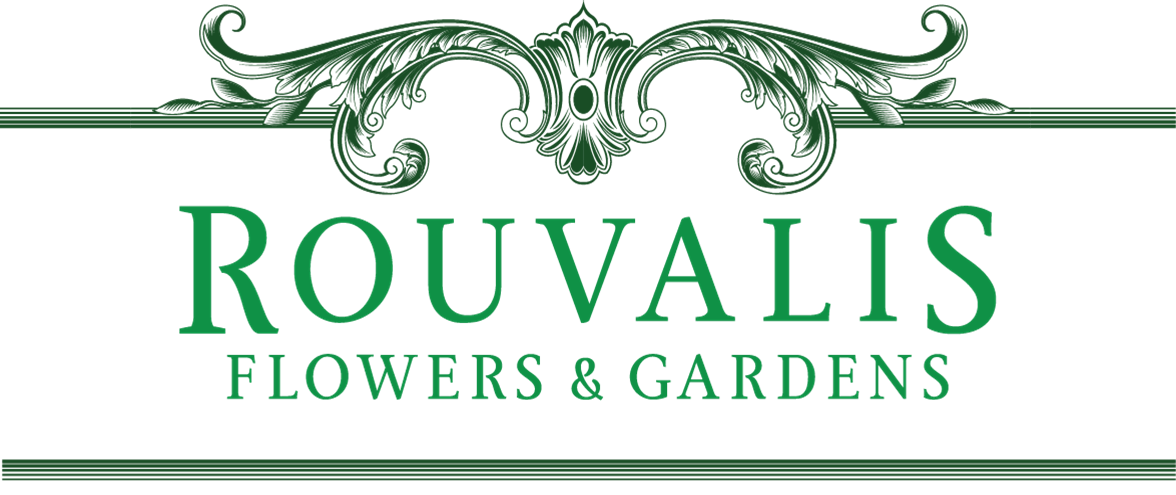 Rouvalis Flowers - Boston Florist, daily fresh flower delivery. Corporate, wedding and event flowers.