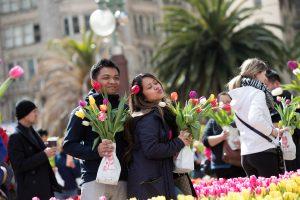 Tulips150-300x200.jpg