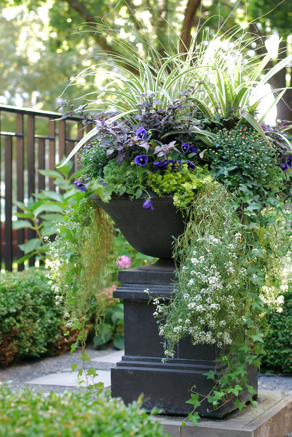 Container Gardens - Container Gardening is our area of expertise. We design exceptional displays to enhance your property's style and image. We provide: - Custom designs- Seasonal and custom rotations- Local and tropical plants- Flowering plants- Colorful foliage- Decorative grasses- Unique Containers- Window Boxes