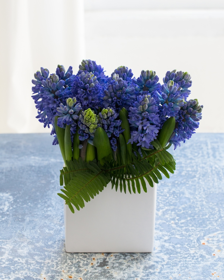 Sweet smelling hyacinth are collected in a white ceramic container to delight the senses.  Was $60 now $50