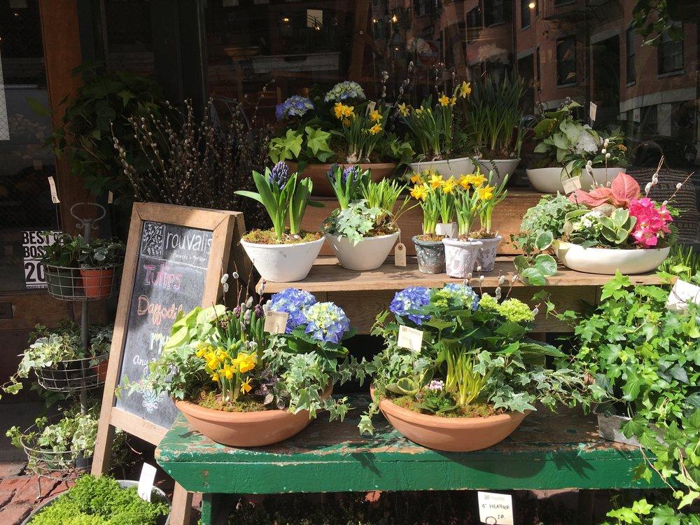 spring front display.JPG
