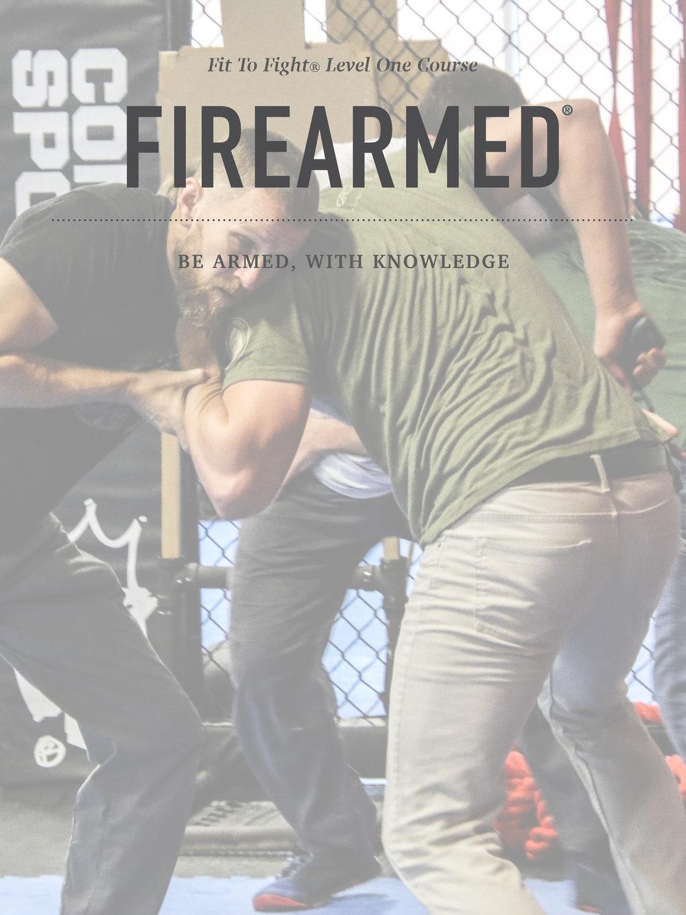 firearmedimageslev1.2-3.jpg