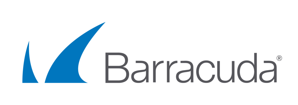 Barracuda Backup 295