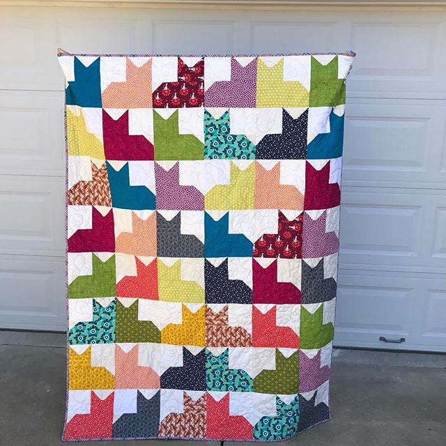 The finished product.  I finished it last night, while watching a movie.  The binding is handstitched on.  I quilted it (what I hope) looks like a ball of string unwound. ( you know cats and string). I love it without borders- I'm so glad I left them off!  Thanks for the tutorial @missouriquiltco .  #quilt #quilting #catquilt #redeyedstudio #sewmystash2017