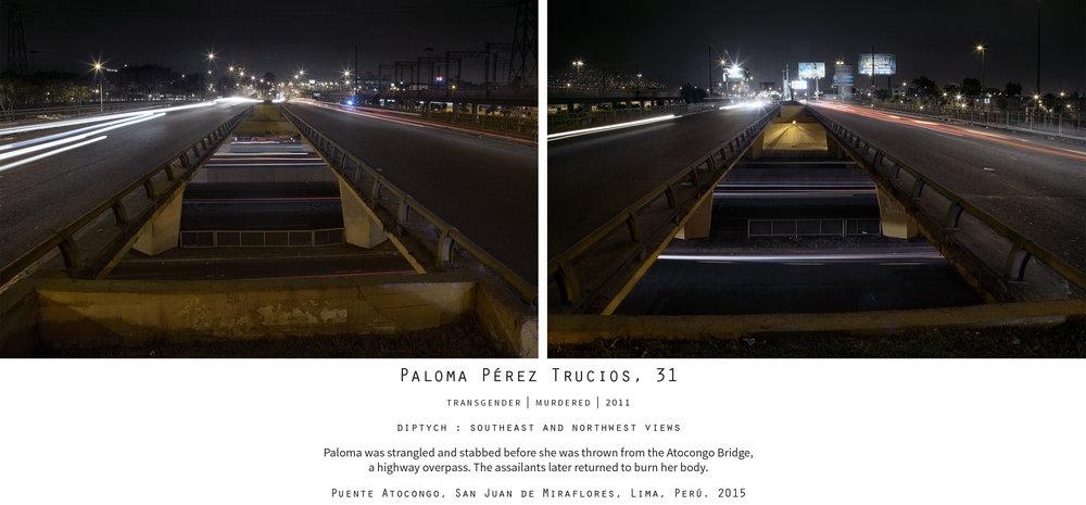 Paloma1.jpg