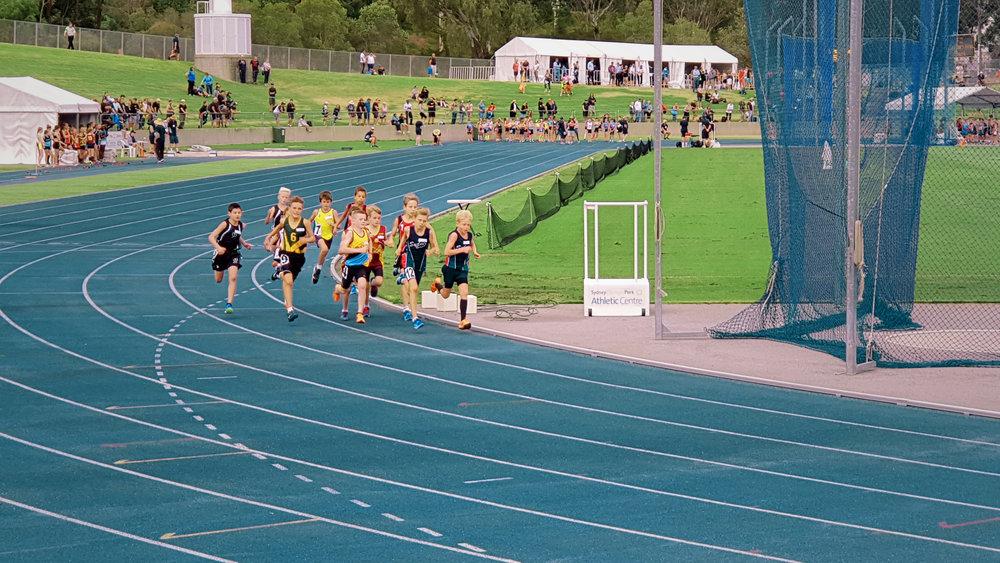 Race track.jpg