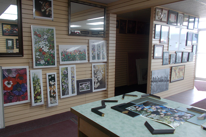 Interoir wall showing framed samples