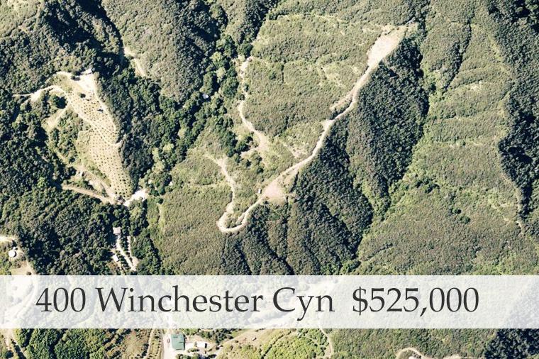 400-Winchester-Cyn.jpg