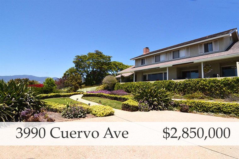 Cuervo SOLD.jpg