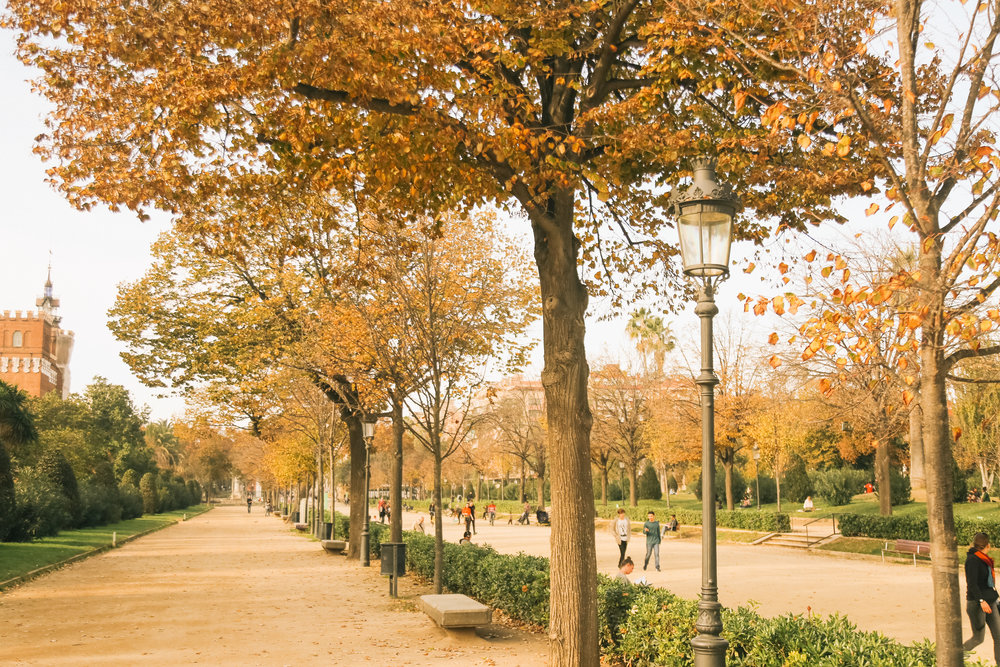 Barcelona Citudella Park_-5.jpg
