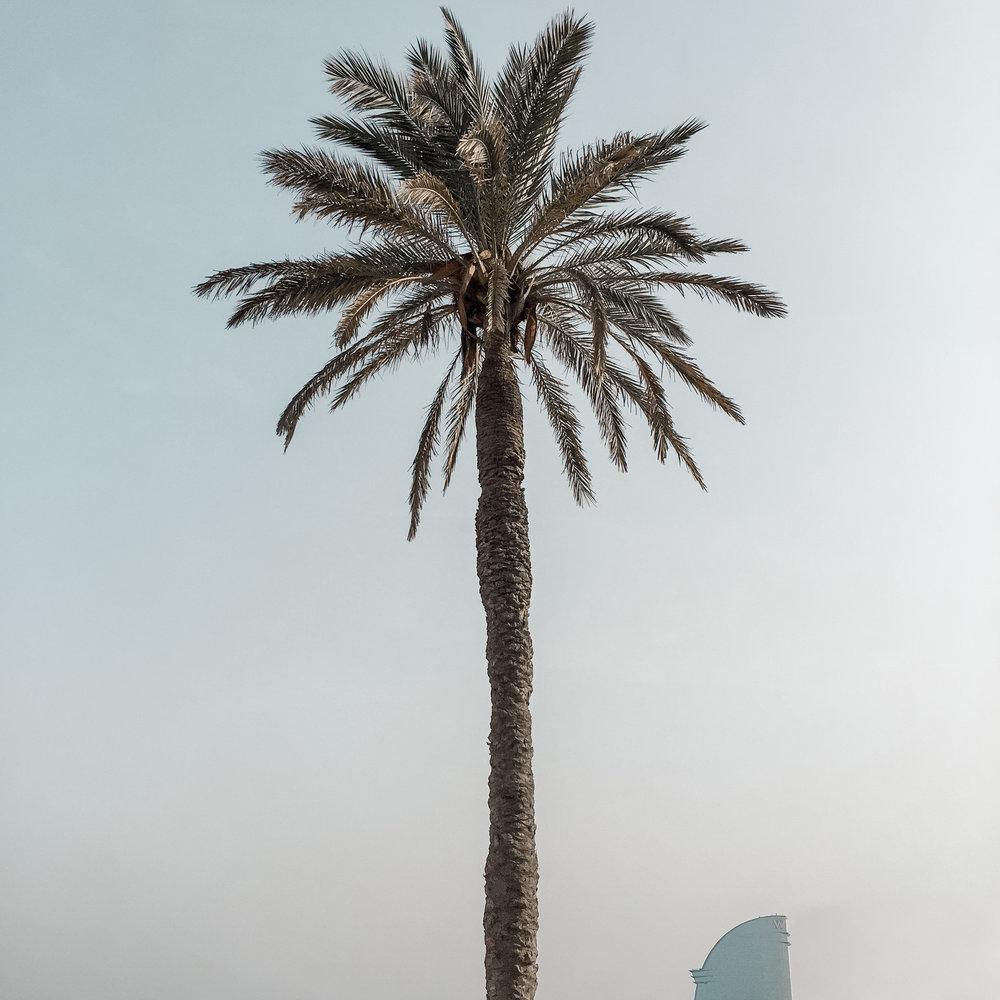 Barcelona Misc*-37.jpg