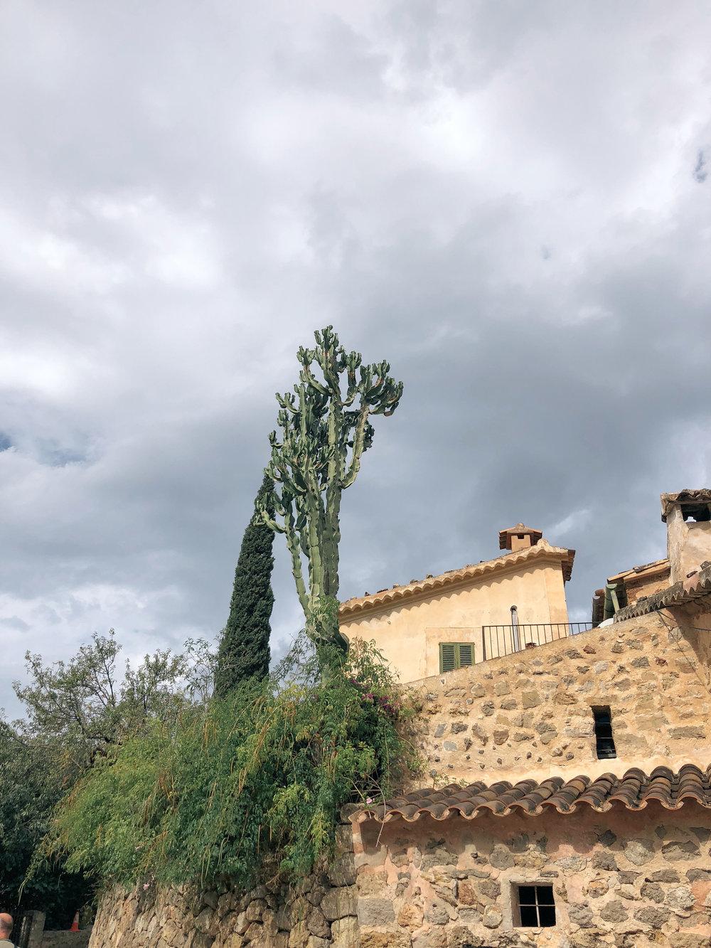 Mallorca*-80.jpg