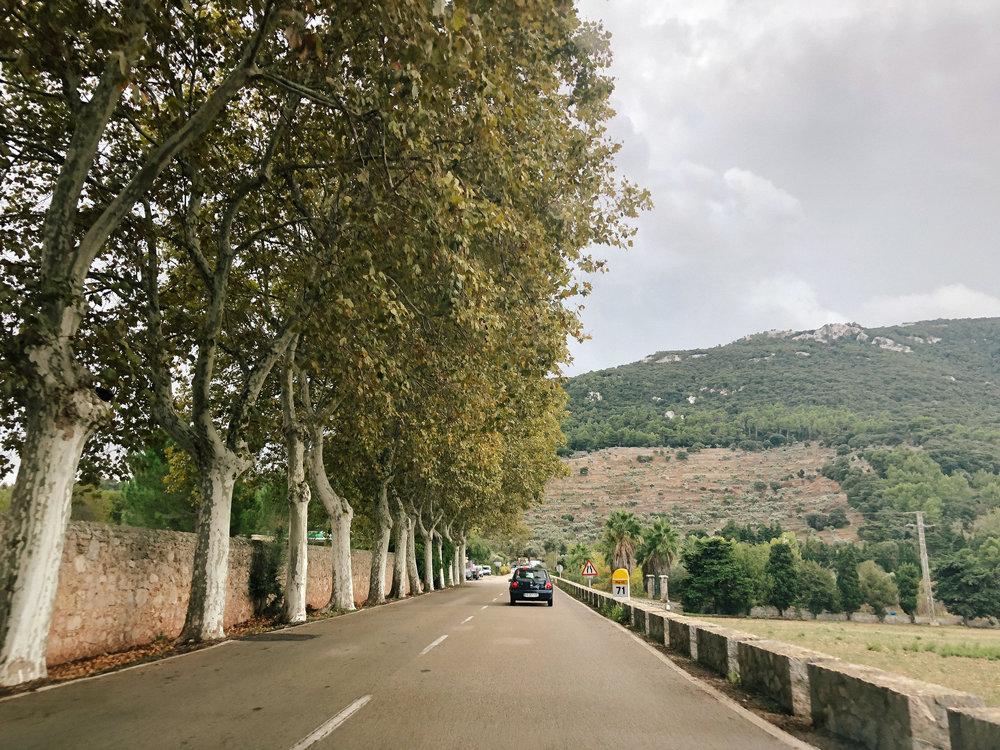 Mallorca*-24.jpg