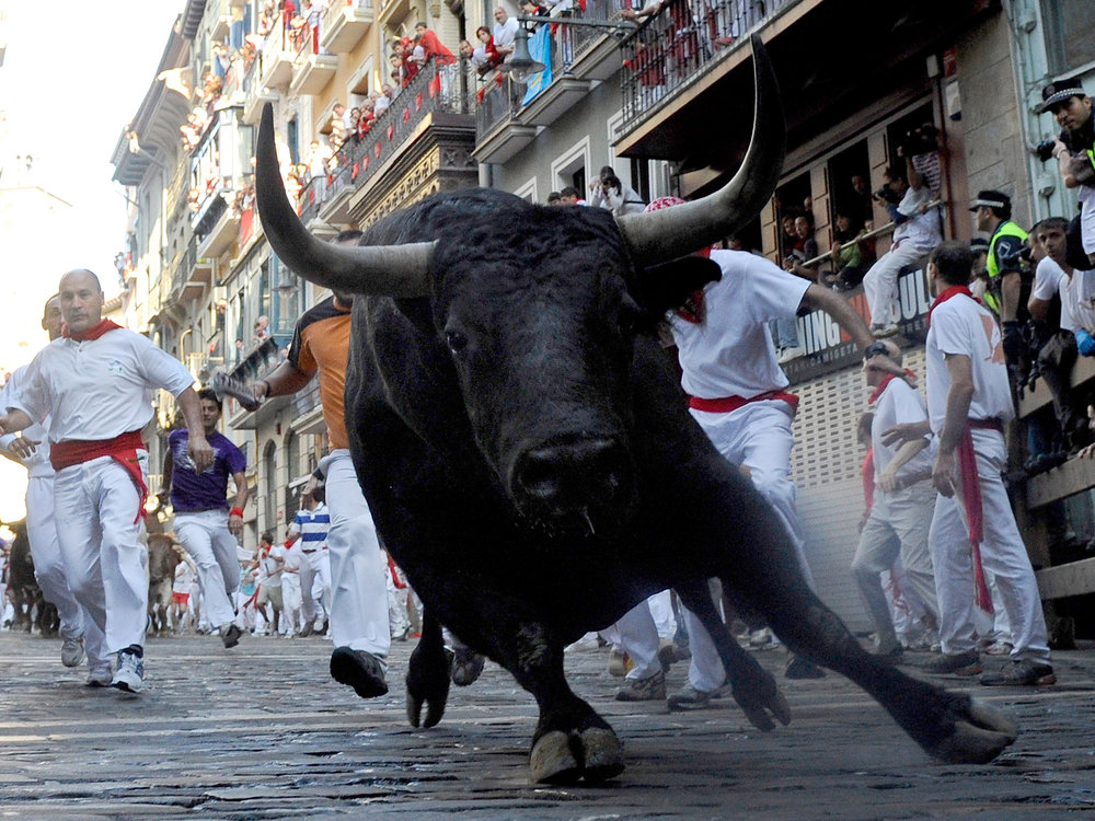 bull-run.jpg