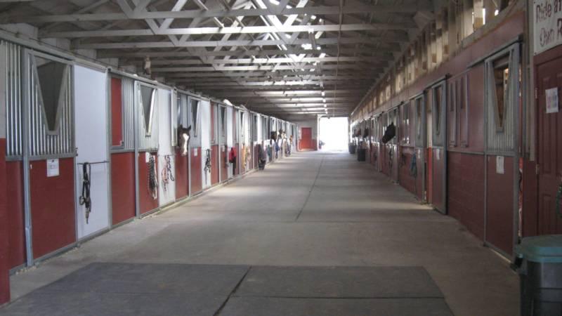 inside_stalls_800x450.jpg