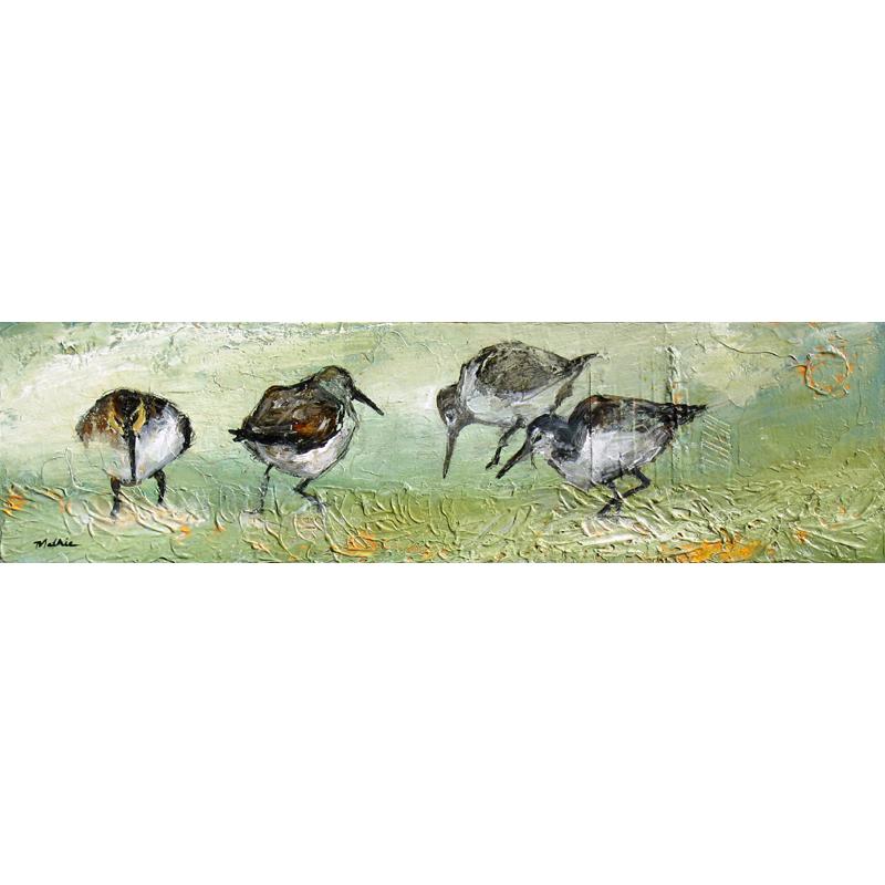 """Shorebirds for Inga"""