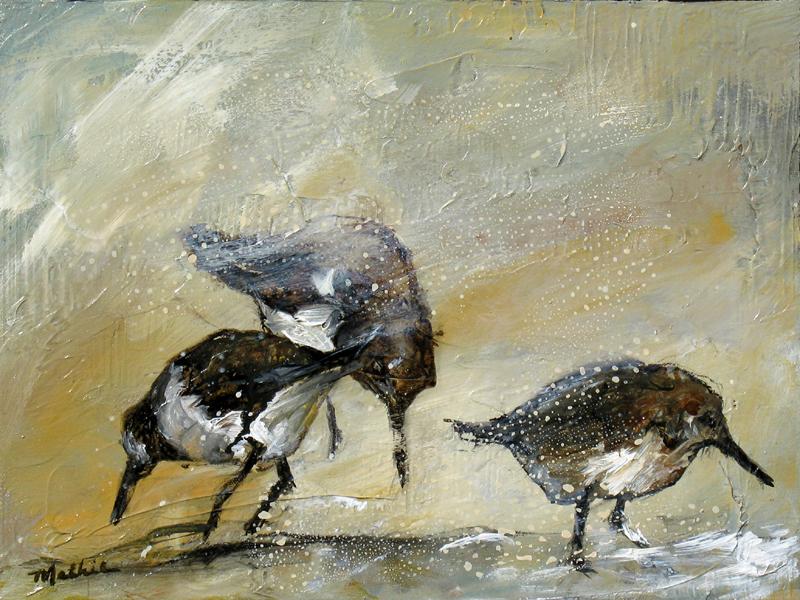 """""""Shorebirds, II"""""""