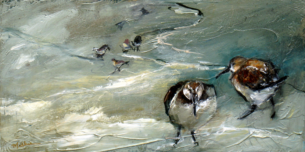 """""""Shorebirds, XIII"""""""