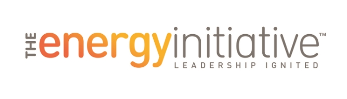 The Energy Initiative