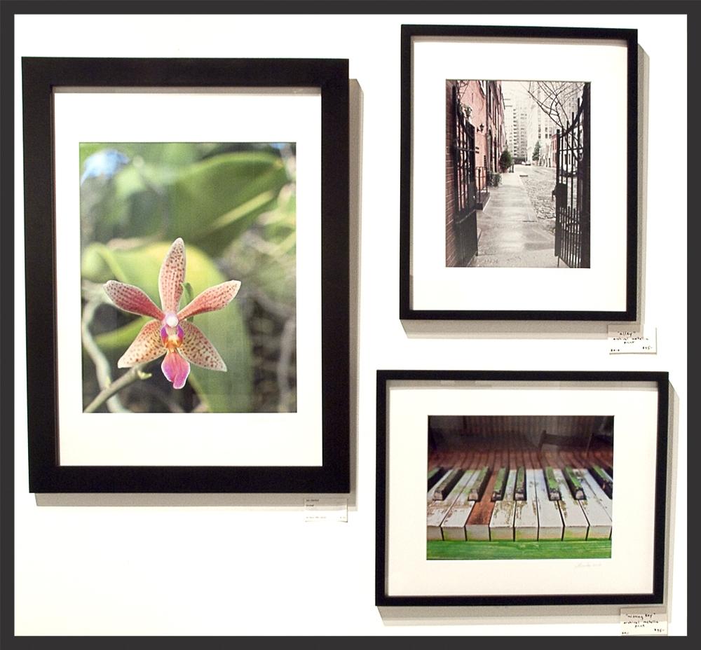 orchid piano alley framed.jpg