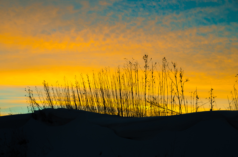 web sunset.jpg