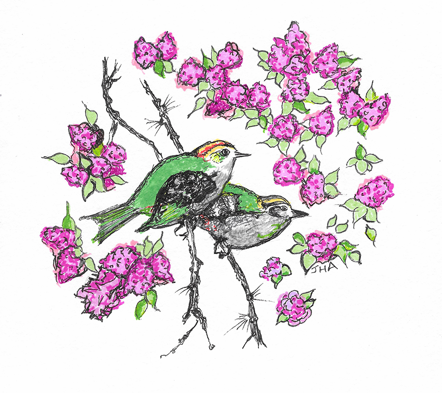 Two Green Birds web.jpg