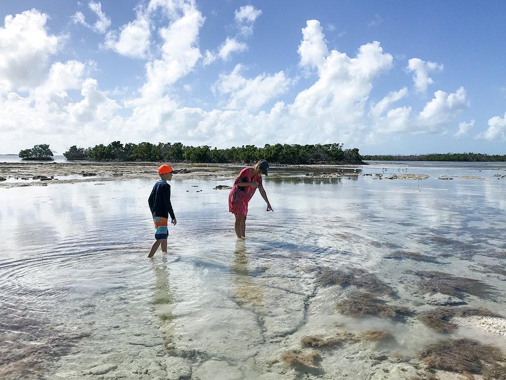 Florida-style tidepools