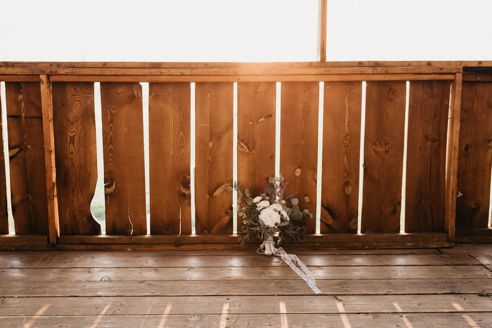 Billings Montana Wedding Engagement Photographer