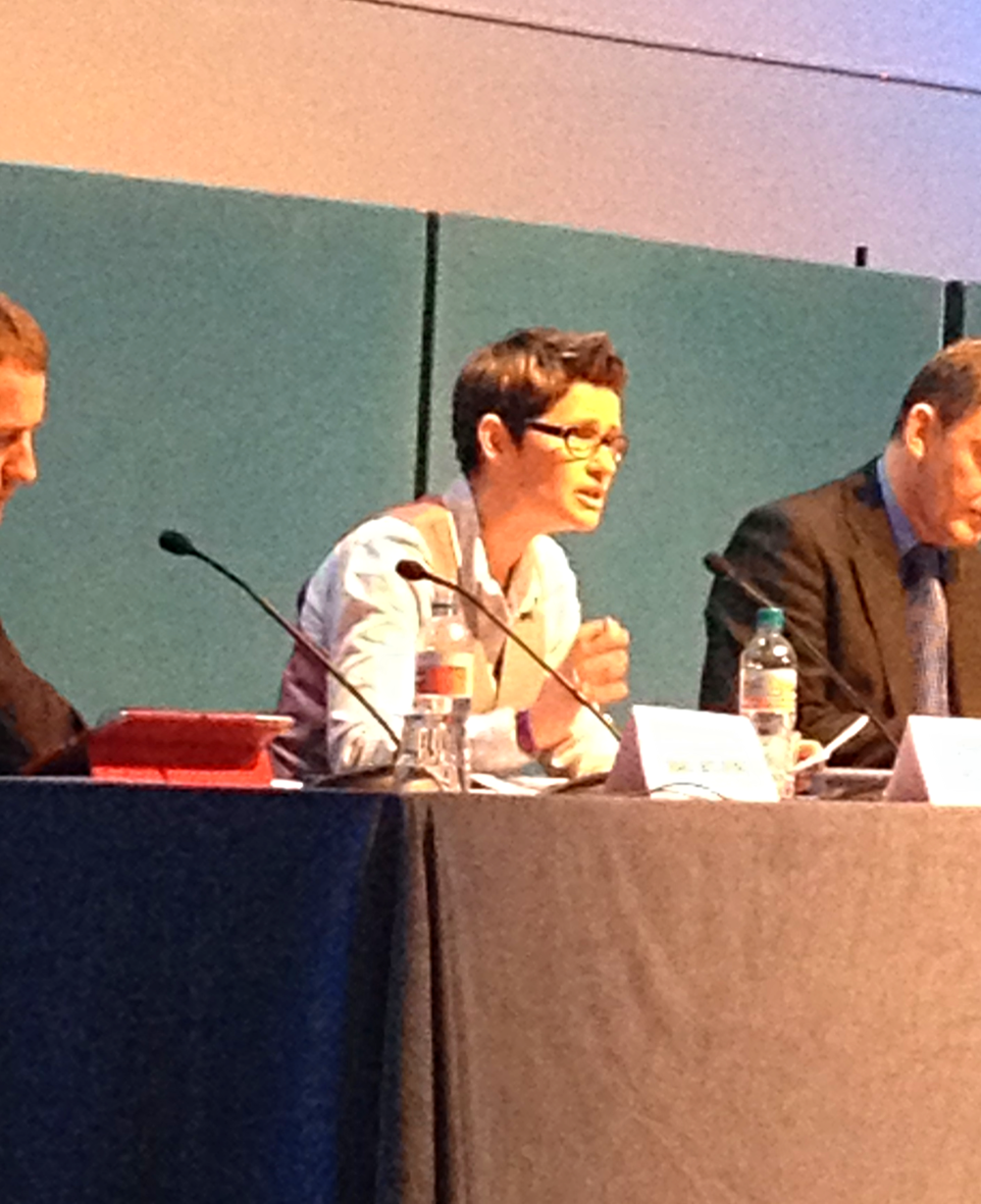 Cat speaking on a panel on public service delivery by charities at Action Hampshire AGM, 2014
