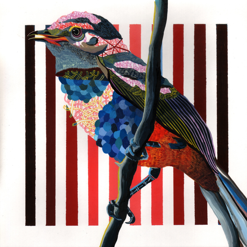 "Endangered Bird #116a   |  10"" x 10""  