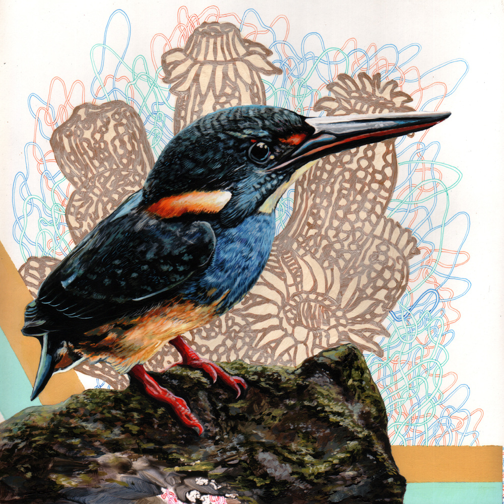 "Endangered Bird #146a   |  10"" x 10""  