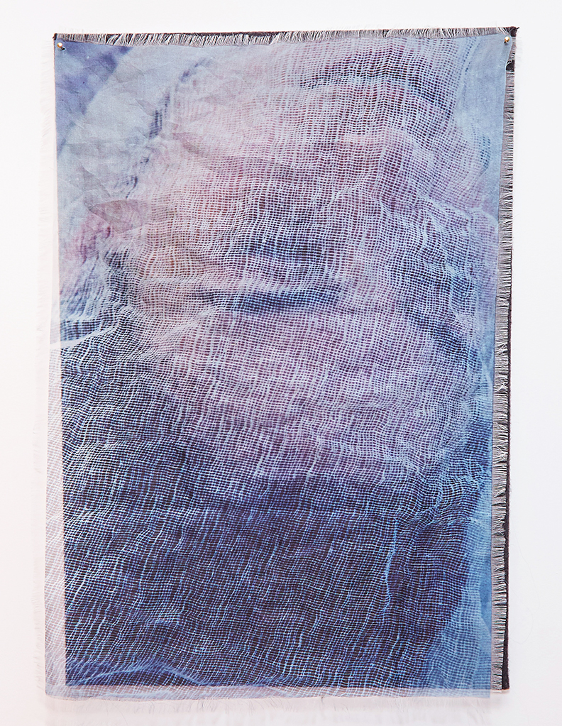 "Viaticum IV  , 2015-2016 |  Pigment on silk organza and stretched felt  | 29"" x 20"" 