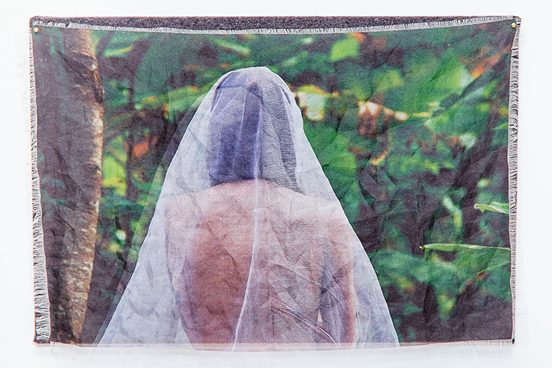 "Viaticum X  , 2015-2016 |  Pigment on silk organza and stretched felt  |  17"" x 25"" 
