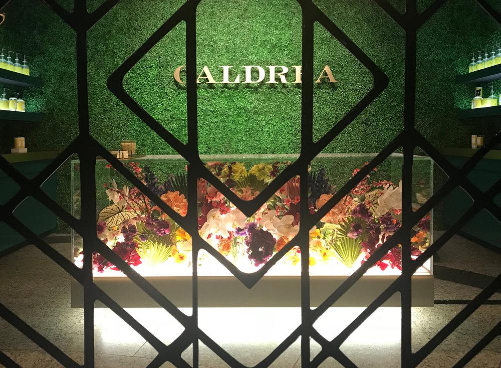 caldrea pop up 7.jpg