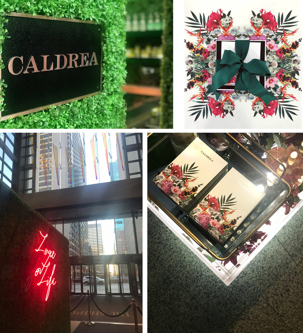 caldrea pop up 1.jpg