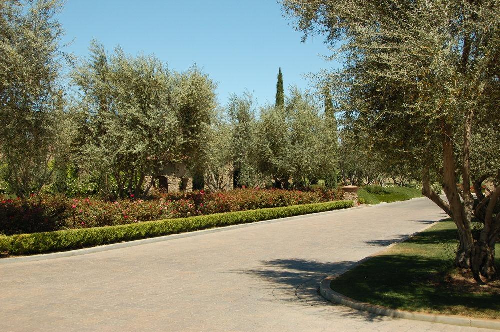 4-22-10 Toscana 155.jpg
