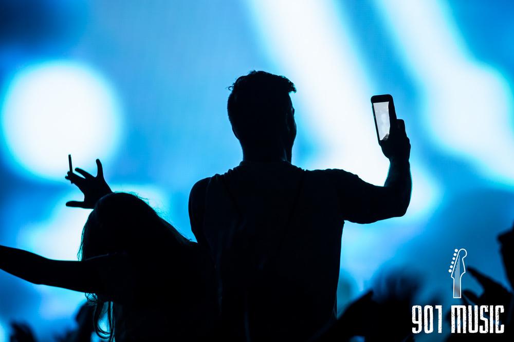 Zedd-18.jpg