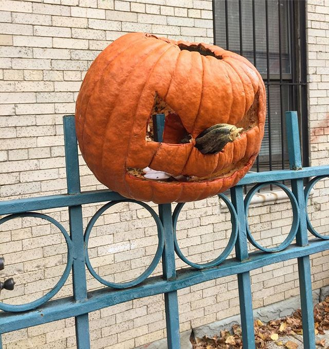 Daytime post Halloween is scarier than Halloween