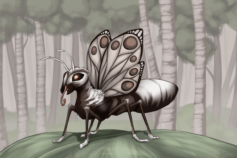 Butterant in the Birches