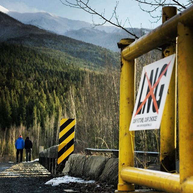 A litany of oil and gas pipelines are planned to cross First Nations territory in NW British Columbia - local communities are saying NO. #nopipelines #ecojustice @protectourwinters @patagonia @forestethics @beyondboarding 🎥 @alexander_falk