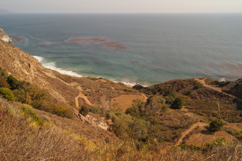 Pacific Cliff