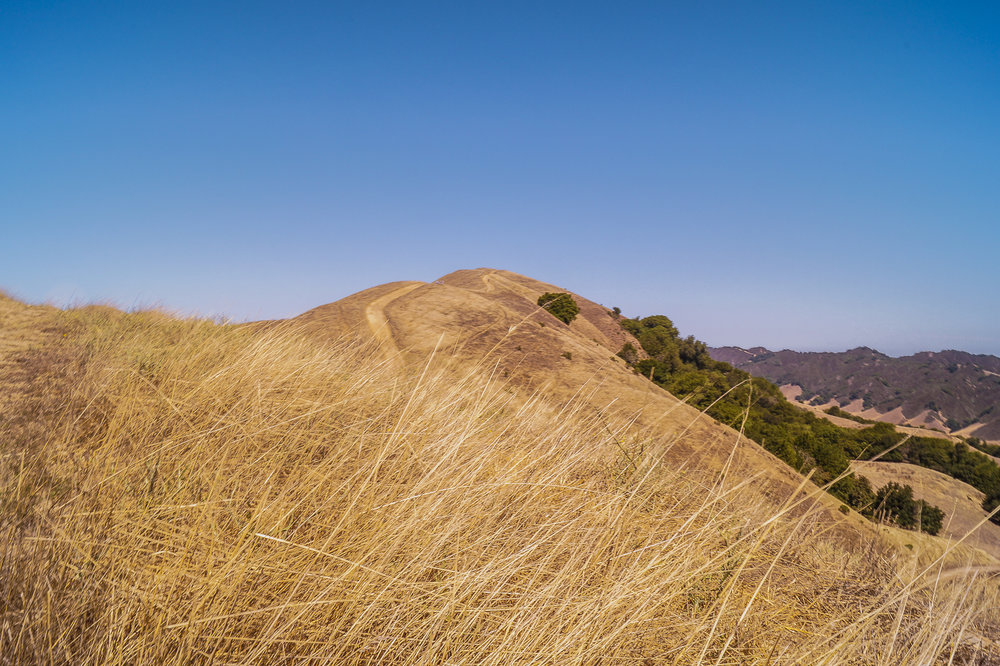 Las Trampas Trail