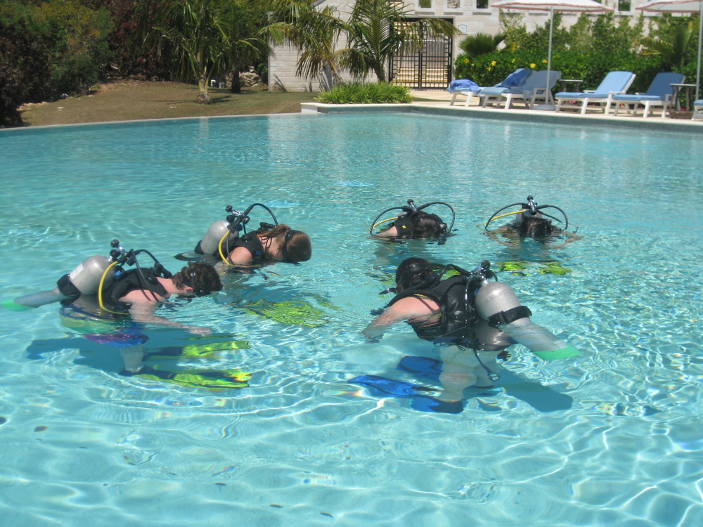 bermuda diving - course
