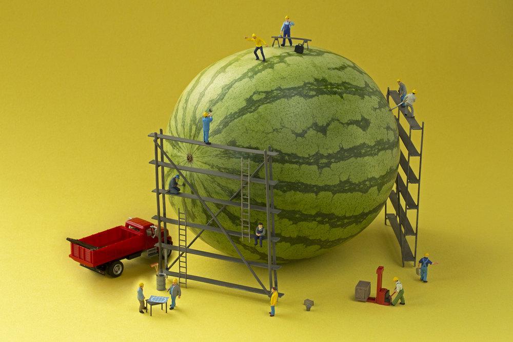 melon builders 4x6 300ppi.jpg