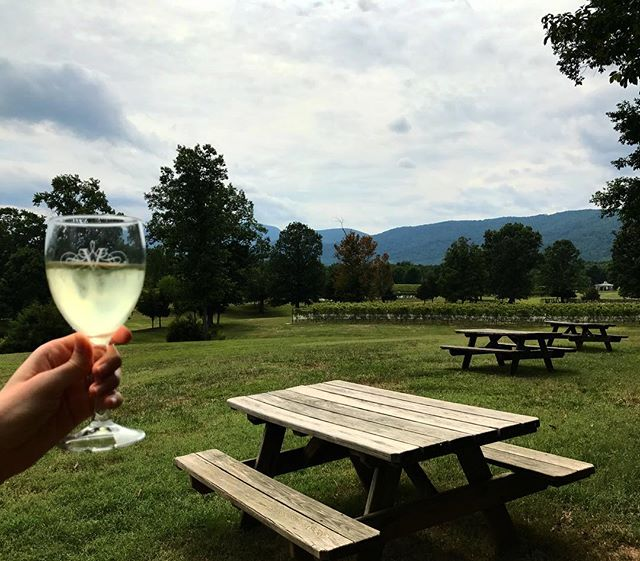 Drink the wine. Do the things. . . . . #wine #winetasting #winery #vinyard #Charlottesville #veritas #vino #winestagram #inspirationaldestinations #girlswhotravel #darlingescapes #travelgram #lovetotravel #traveldiary #beautifuldestinations #picnic #loveVA #nova #keepitwild #ff